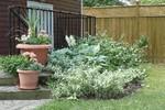 Garden Suite Private Entrance