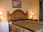 Amber Room<br><br>  The Amber Room is a very modern and classy accomodation.  The room is decorated in a very modern and classy style.  The floors consist of dark hard wood and ceramic tiles.  The room has it's own private 3 pc.  bathroom.  <br><br>